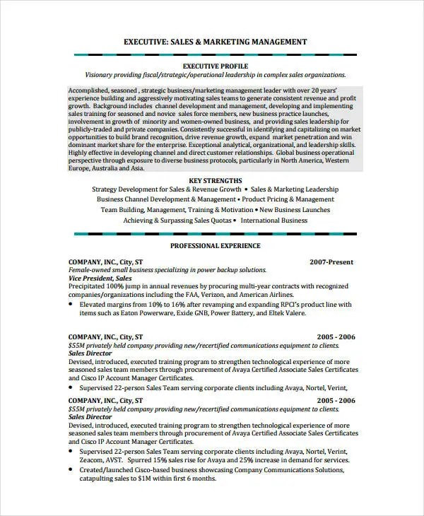 10+ Account Manager Resume Templates - PDF, DOC Free  Premium - profile in resume example