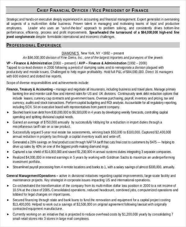 cfo resume samples - Akbagreenw