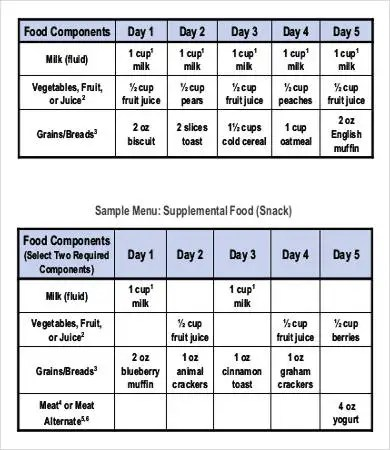 28+ Meal Plan Templates Free  Premium Templates - daycare meal plan