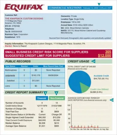 10+ Best Free Credit Report Templates Free  Premium Templates