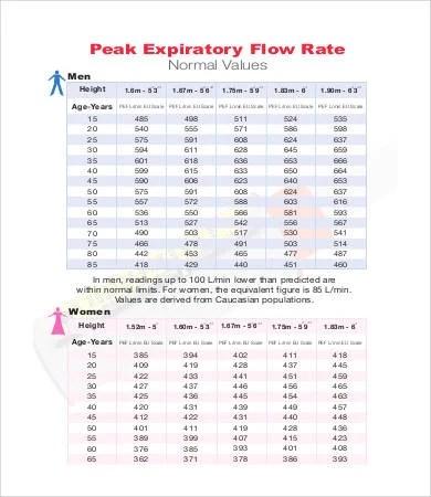 Peak Flow Chart Templates - 7+ Free PDF Documents Download Free