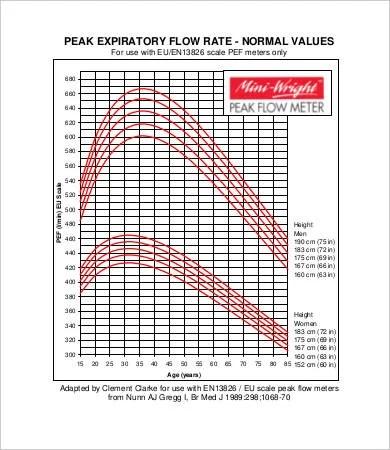 Peak Flow Meter Chart Pediatric - Peak flow chart sivan crewpulse co