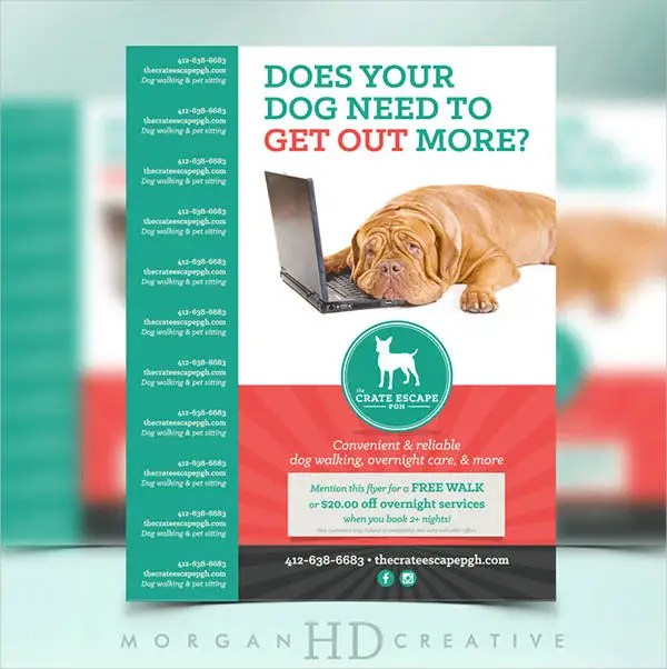 Dog Walking Flyer Template - 14+ Free PSD, Vector AI, EPS Format