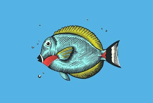 Finding Nemo Wallpaper 3d 9 Fish Drawings Free Amp Premium Templates