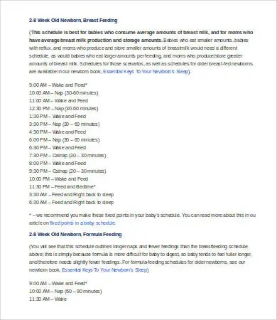 Newborn Schedule - 7+ Free Word, Excel, PDF Documents Download