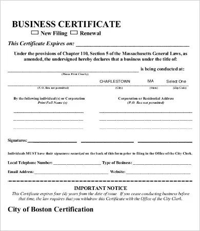 Blank Certificate - 9+ Free Word, PDF Documents Download Free - cpe certificate template