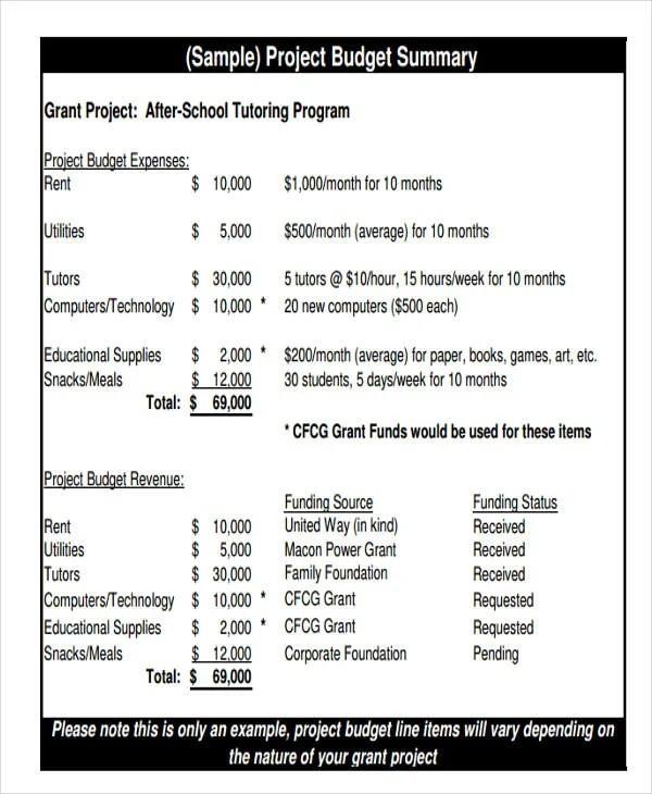 9+ Program Budget Templates Free  Premium Templates - sample budget summary template