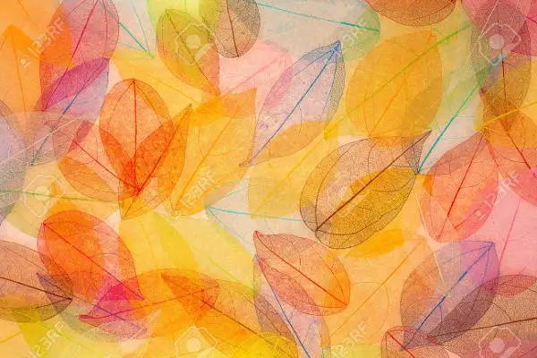 Fall Be Kind Wallpaper 9 Fall Textures Free Psd Png Vector Eps Format