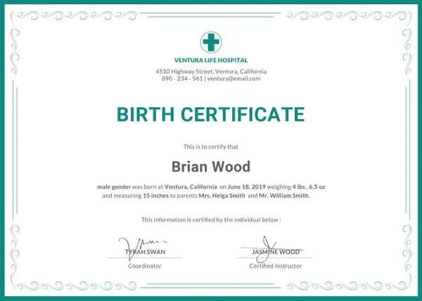 Sample Birth Certificate Templates - 6+ Free Word, PDF Documents