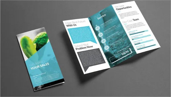 9+ Corporate Company Brochures - Designs, Templates Free  Premium