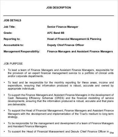 Financial Manager Job Description - 8+ Free Word, PDF Format - financial assistant job description