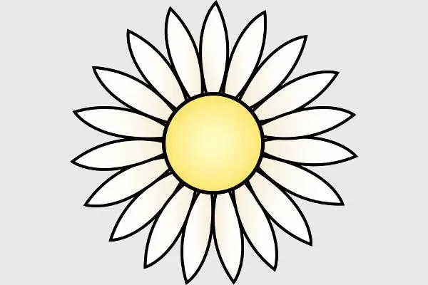 5+ Daisy Flower Templates - Free PSD, Vector AI, EPS Format Download