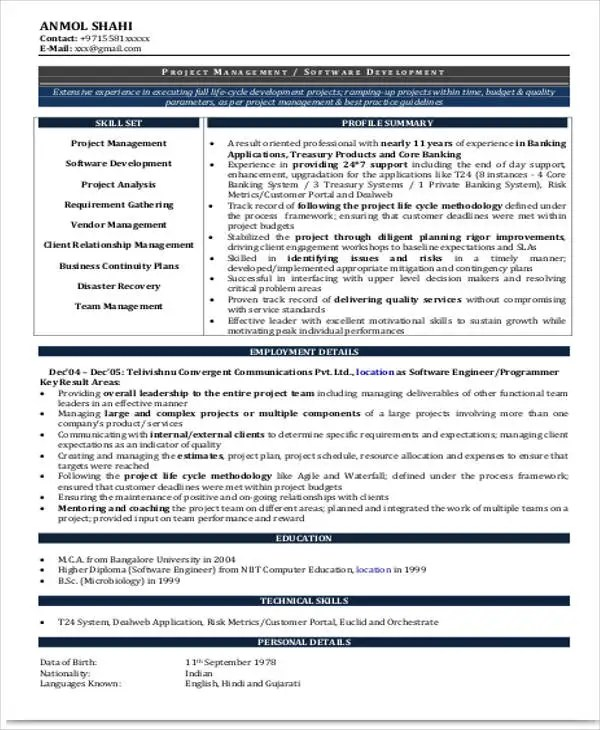 Resume Sample For Experienced Professional - professional it resume format