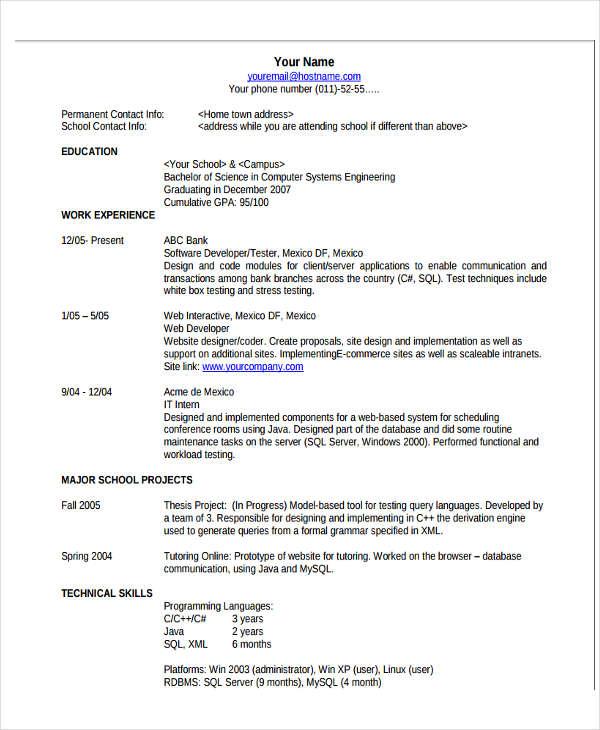19+ Basic Resume Format Templates - PDF, DOC Free  Premium Templates