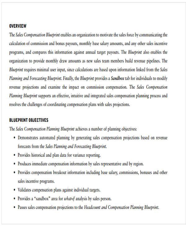 IT Sales Plan Templates - 5+ Free Word, PDF Format Download - compensation plan template