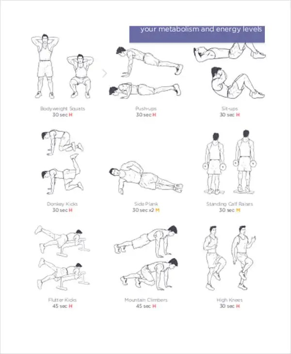 Weekly Workout Schedule Templates - 5+ Free Word, PDF Format