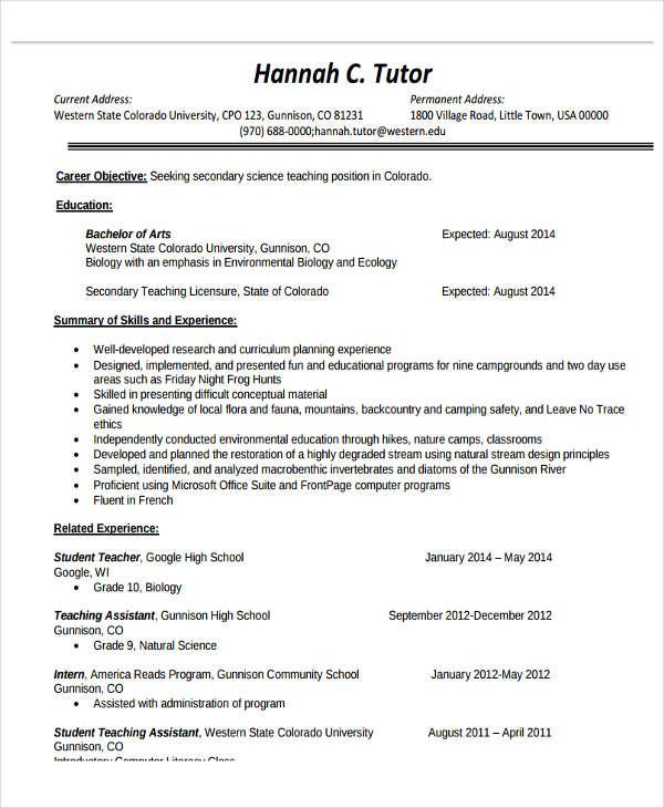 resume for high school art teacher