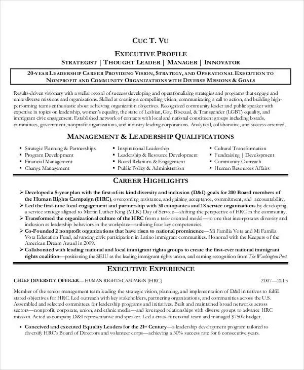 20+ Best Executive Resume Templates - PDF, DOC Free  Premium