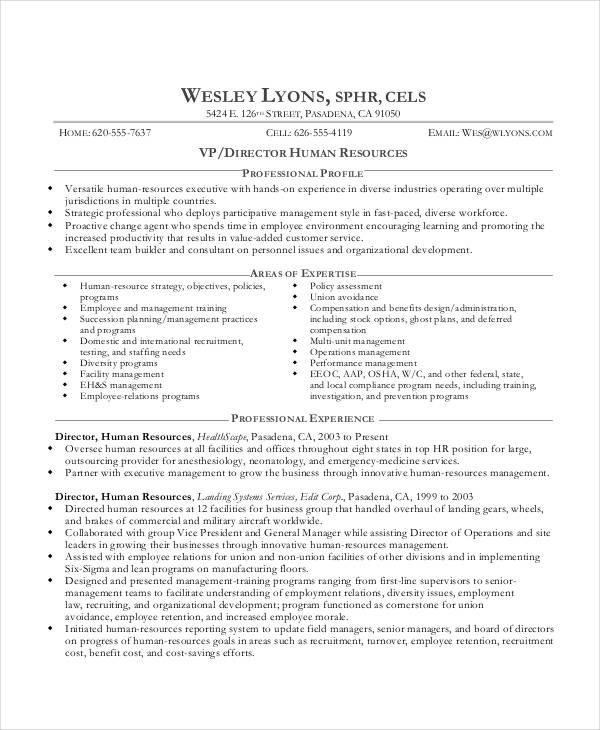 20+ Best Executive Resume Templates - PDF, DOC Free  Premium