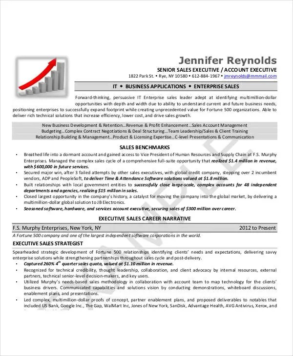 24+ Best Executive Resume Templates - PDF, DOC Free  Premium