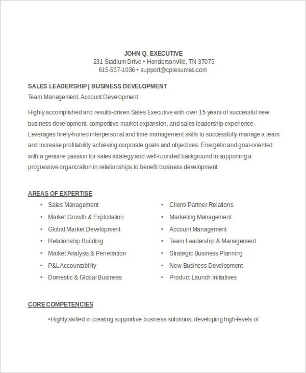 45+ Executive Resume Templates - PDF, DOC Free  Premium Templates - Sales Executive Resume Template