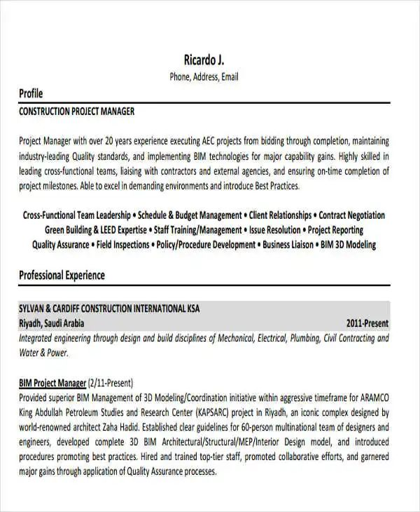 business project manager example resume