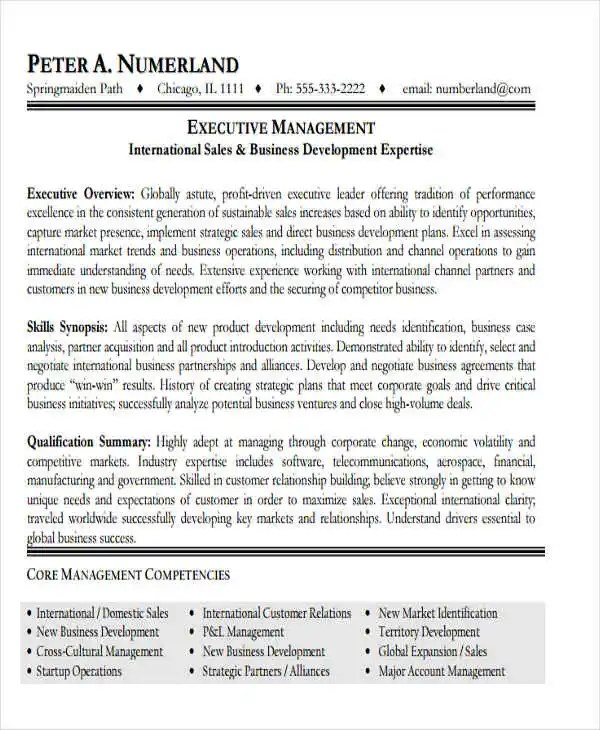 20+ Modern Business Resume Templates - PDF, DOC Free  Premium