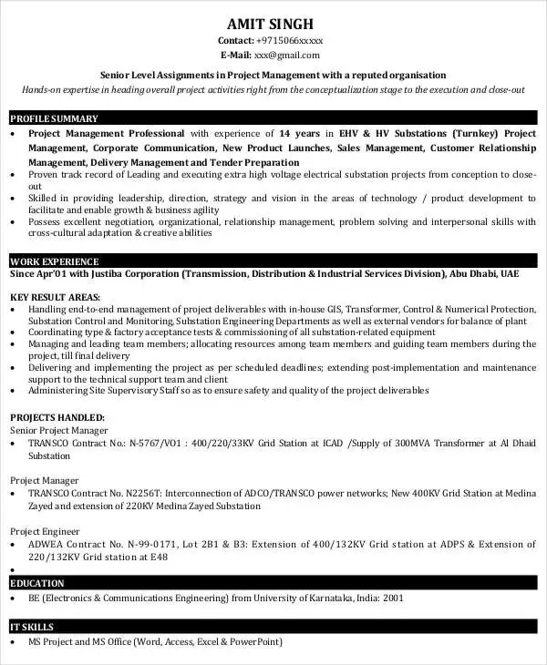 49+ Professional Manager Resumes - PDF, DOC Free  Premium Templates - sample project management resume