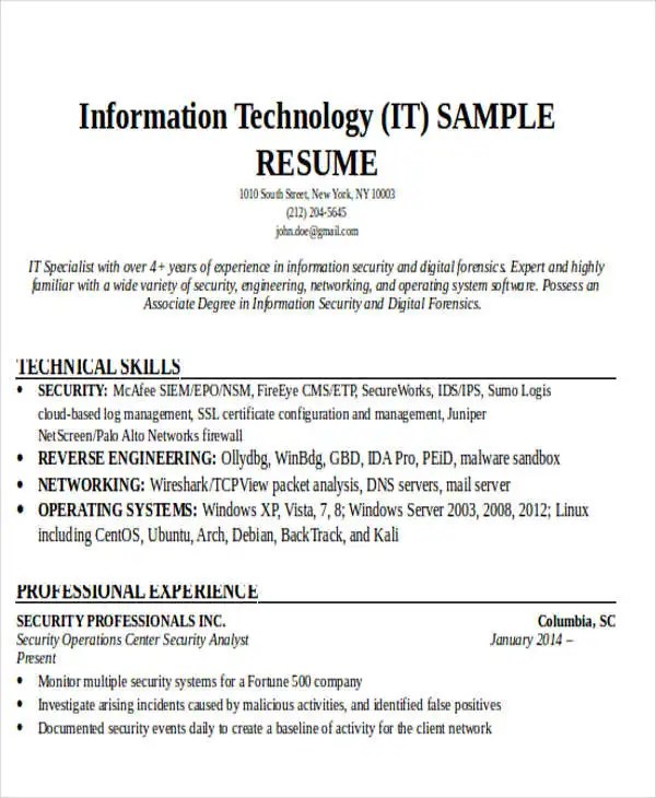 21 it resume templates free premium templates it resume sample - It Sample Resumes