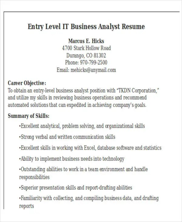 20+ IT Resume Templates - PDF, DOC Free  Premium Templates