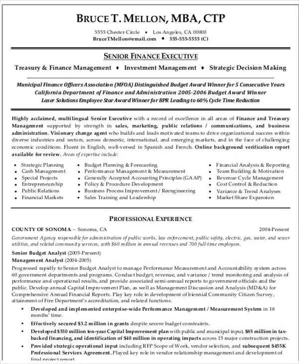 resume format for professionals