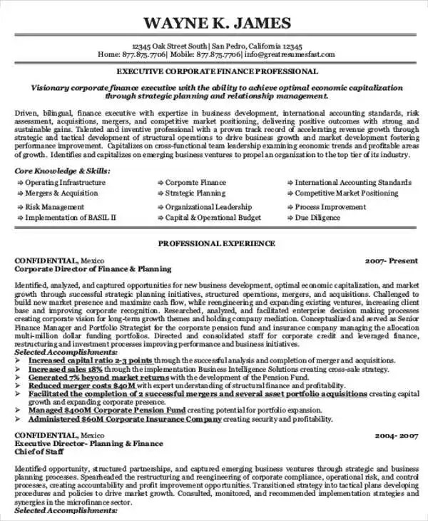 25+ Finance Resumes in PDF Free \ Premium Templates - director of finance resume