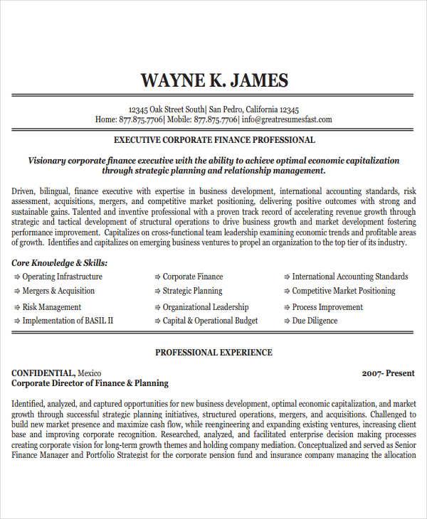 24+ Free Finance Resume Templates - PDF, DOC Free  Premium Templates - resume templates finance