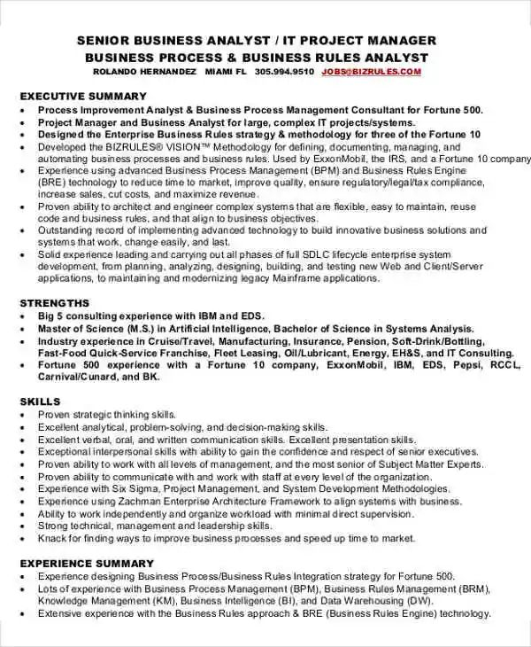 sr business analyst resume sample