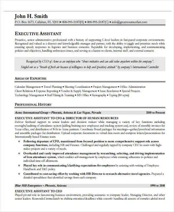 20+ Best IT Resume Templates - PDF, DOC Free  Premium Templates