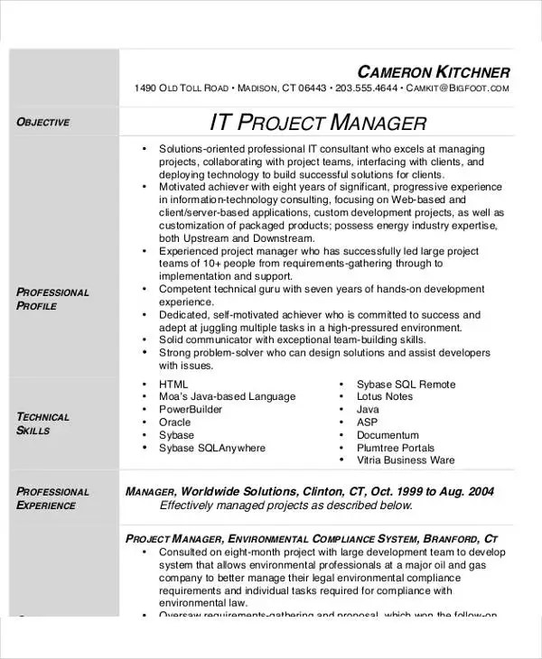 54 Manager Resumes in PDF Free  Premium Templates - implementation manager resumes