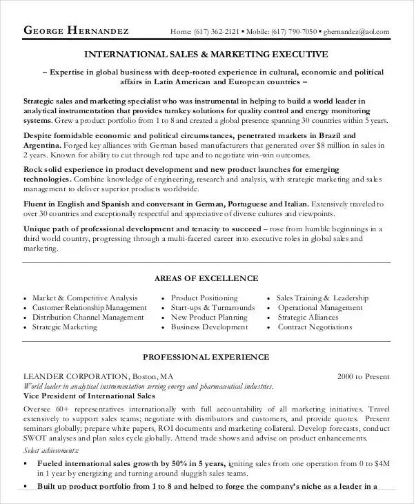 20+ Executive Resume Templates - PDF, DOC Free  Premium Templates - marketing executive resume samples