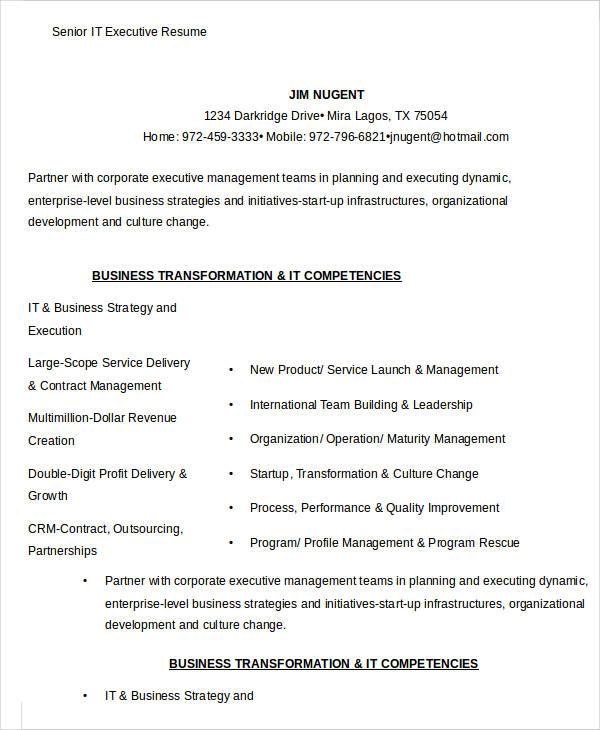 20+ Executive Resume Templates - PDF, DOC Free  Premium Templates