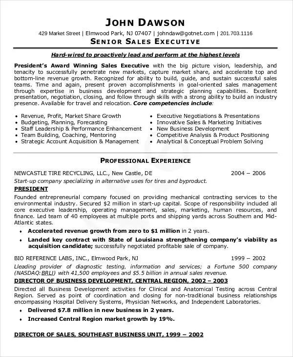 sample resume for it professional doc