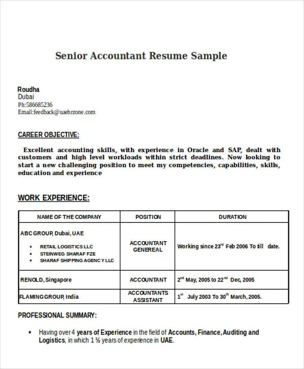 38+ Accountant Resumes in Doc Free  Premium Templates