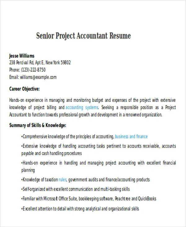 sample resume accountant doc