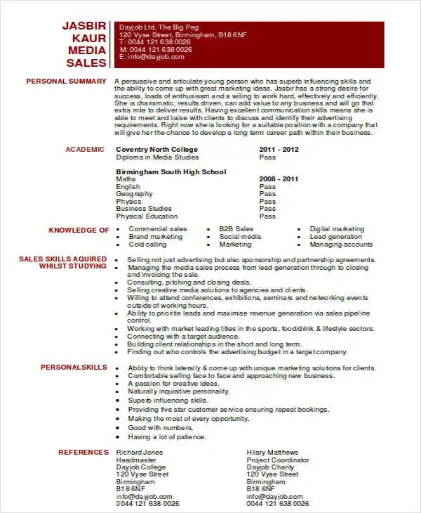 Media Sales Resume Media Sales Executive Cv Sample, Robin Kofsky - Media Sales Resume