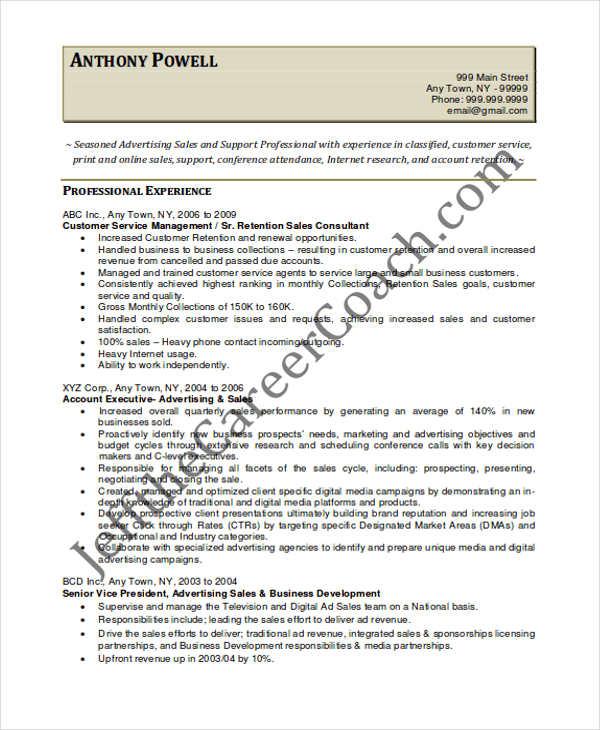 30+ Printable Sales Resume Templates - PDF, DOC Free  Premium - vice president of sales resume