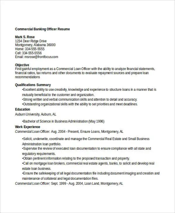 14+ Banking Resume Templates in Word Free  Premium Templates - commercial loan officer sample resume