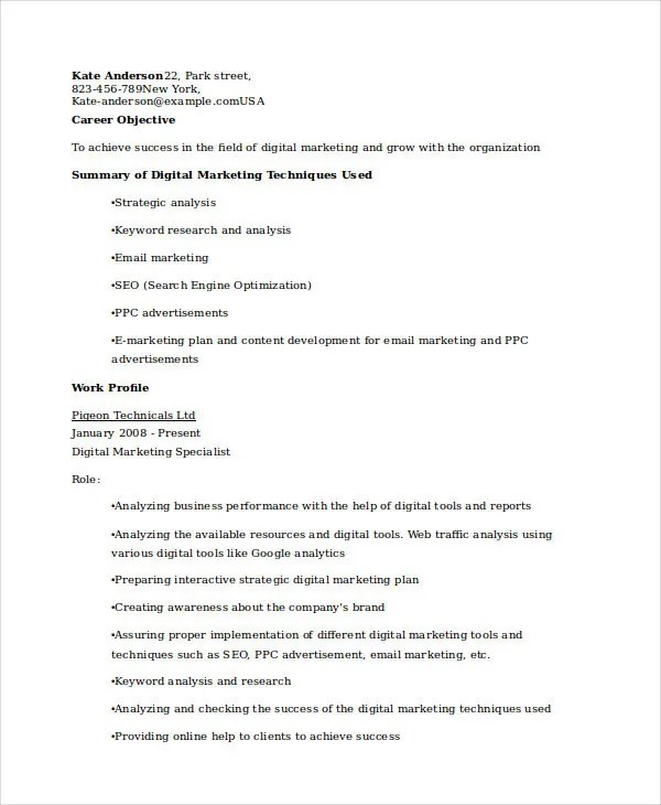 business analyst sample resume dice professional resumes example