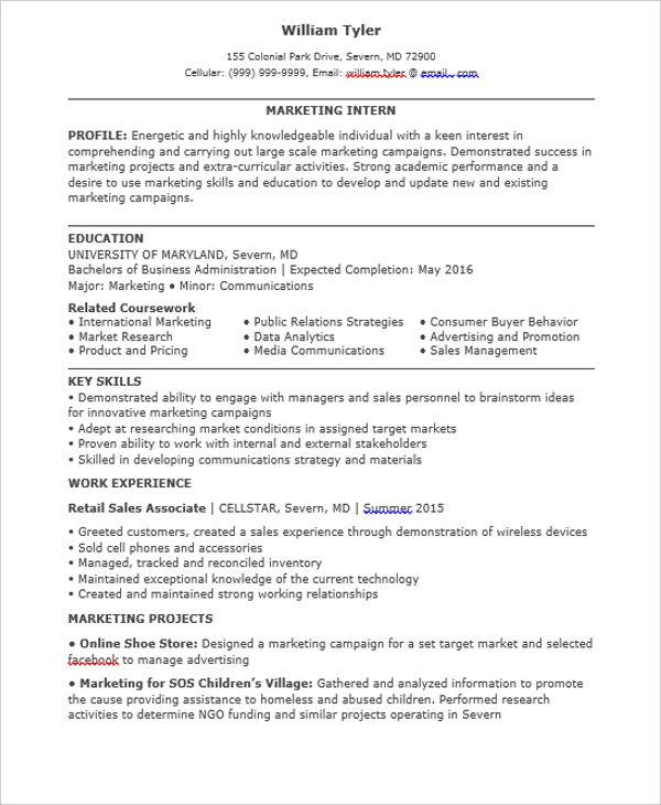 30+ Professional Marketing Resume Templates - PDF, DOC Free - marketing skills resume