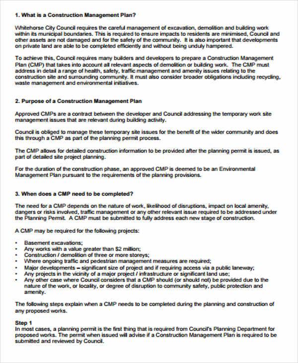 42+ Management Plan Templates - PDF, Word Free  Premium Templates