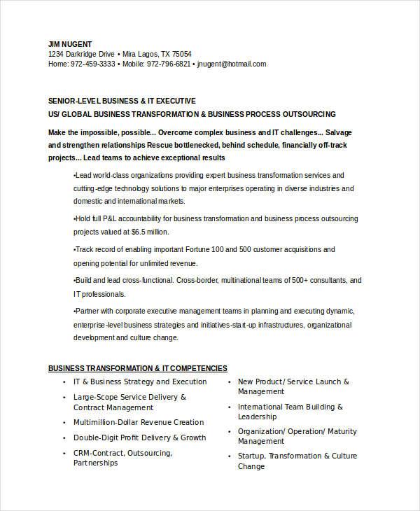 20+ Professional IT Resume Templates - PDF, DOC Free  Premium
