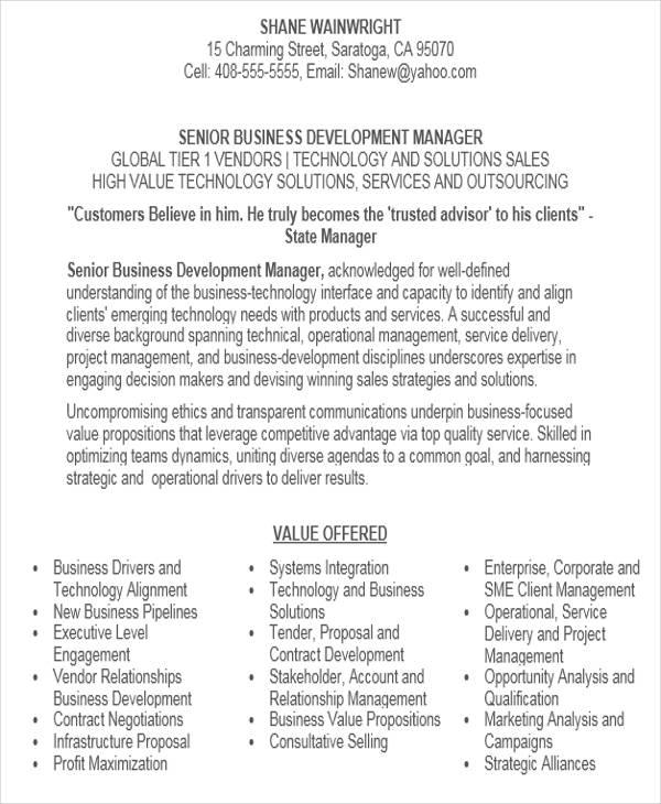 32+ Modern Executive Resume Templates Free  Premium Templates - business development executive resume