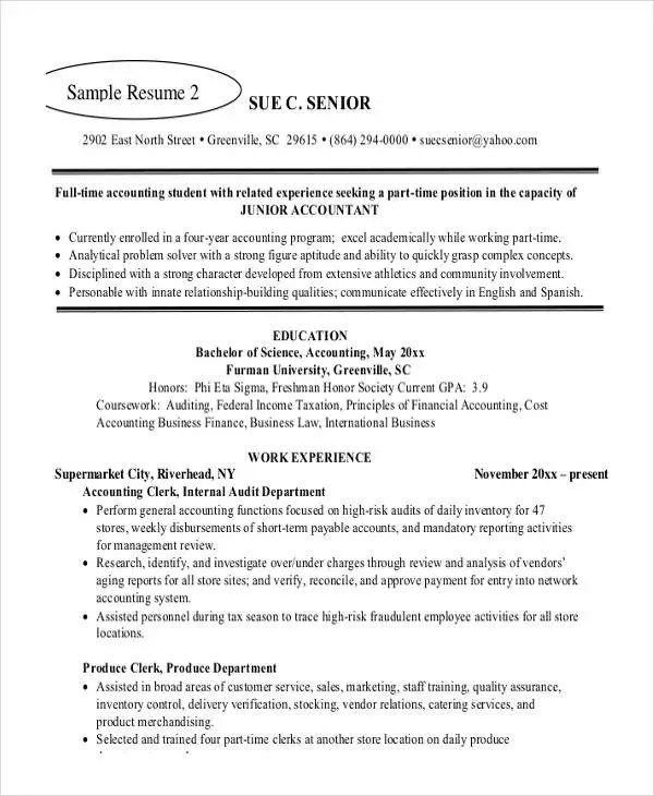 21+ Accountant Resume Templates in PDF Free  Premium Templates